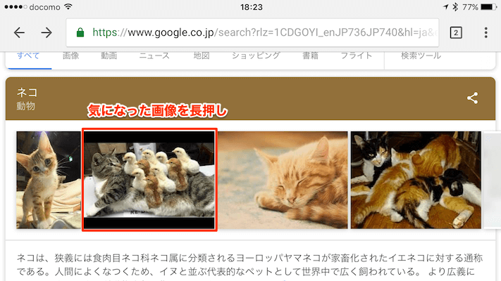 画像の検索方法
