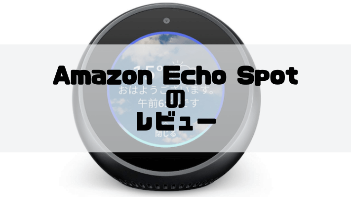Echo Spotのレビュー